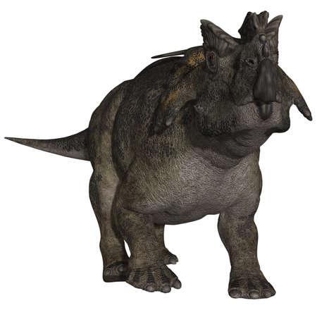 caudal: Achelousaurus - 3D Dinosaur