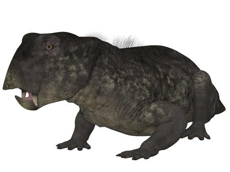 Lystrosaurus- 3D Dinosaur Stock Photo