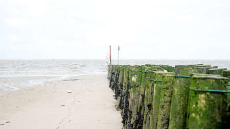dreary: A grey dreary day at a North Sea beach, with a view of wooden algae covered post fence. Stock Photo