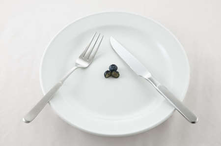 low cal: Blue Berry Diet