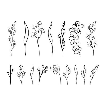 Doodle floral branch. Black leaves vector set. Simple Floral collection. Hand drawn Eco symbols. . Vector illustration