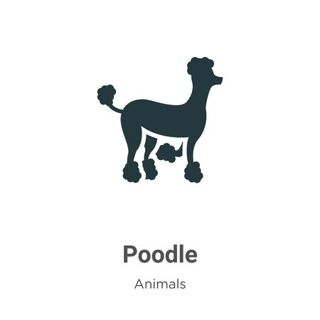 Poodle vector icon on white background. Flat vector poodle icon symbol sign from modern animals collection for mobile concept and web apps design.