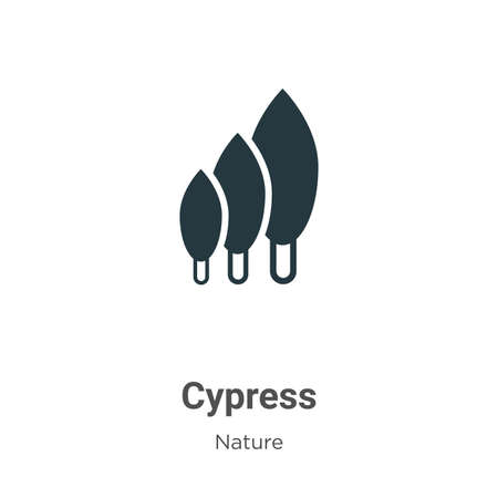 Cypress vector icon on white background. Flat vector cypress icon symbol sign from modern nature collection for mobile concept and web apps design.