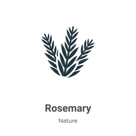 Rosemary vector icon on white background. Flat vector rosemary icon symbol sign from modern nature collection for mobile concept and web apps design.