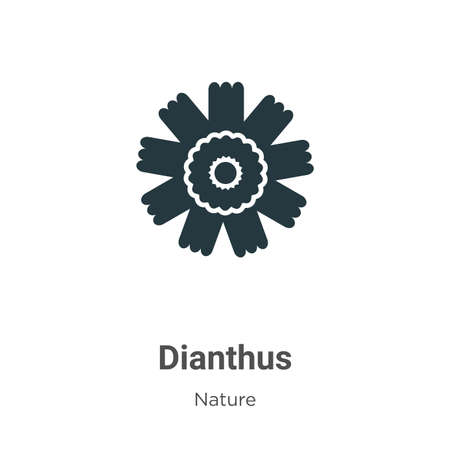 Dianthus vector icon on white background. Flat vector dianthus icon symbol sign from modern nature collection for mobile concept and web apps design.