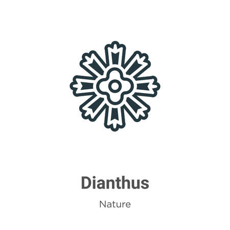 Dianthus vector icon on white background. Flat vector dianthus icon symbol sign from modern nature collection for mobile concept and web apps design. 向量圖像