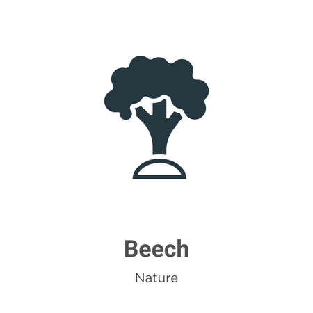 Beech vector icon on white background. Flat vector beech icon symbol sign from modern nature collection for mobile concept and web apps design.