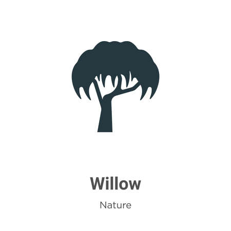 Willow vector icon on white background. Flat vector willow icon symbol sign from modern nature collection for mobile concept and web apps design.