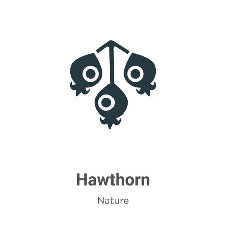 Hawthorn vector icon on white background. Flat vector hawthorn icon symbol sign from modern nature collection for mobile concept and web apps design.