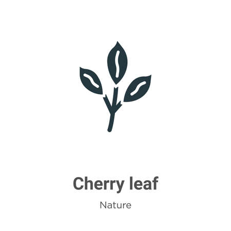 Cherry leaf vector icon on white background. Flat vector cherry leaf icon symbol sign from modern nature collection for mobile concept and web apps design.