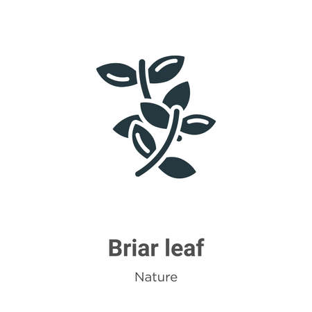 Briar leaf vector icon on white background. Flat vector briar leaf icon symbol sign from modern nature collection for mobile concept and web apps design.