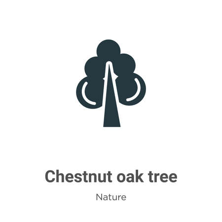 Chestnut oak tree glyph icon vector on white background. Flat vector chestnut oak tree icon symbol sign from modern nature collection for mobile concept and web apps design.