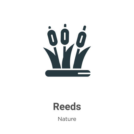 Reeds glyph icon vector on white background. Flat vector reeds icon symbol sign from modern nature collection for mobile concept and web apps design.