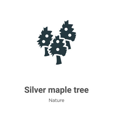 Silver maple tree glyph icon vector on white background. Flat vector silver maple tree icon symbol sign from modern nature collection for mobile concept and web apps design. Ilustração