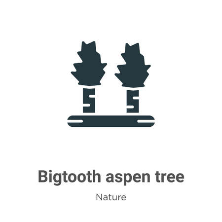 Bigtooth aspen tree glyph icon vector on white background. Flat vector bigtooth aspen tree icon symbol sign from modern nature collection for mobile concept and web apps design.