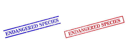 Grunge ENDANGERED SPECIES stamp seals in red and blue colors. Seals have distress style. Vector rubber imitations with ENDANGERED SPECIES caption inside rectangle frame, or parallel lines.