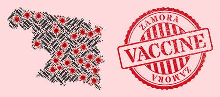 Vector mosaic Zamora Province map of SARS virus, vaccine icons, and red grunge vaccine seal. Virus elements and dose items inside Zamora Province map.