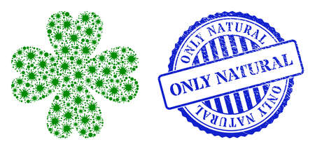 Coronavirus mosaic four leaf clover icon, and grunge ONLY NATURAL seal stamp. Four leaf clover mosaic for breakout templates, and grunge round blue watermark. 矢量图像