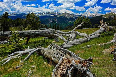 divides: Divide Colorado