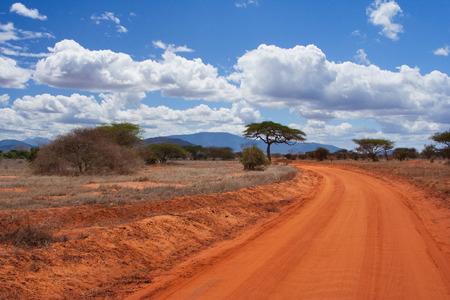 tsavo: Savannah road  in Tsavo park, Kenya Stock Photo