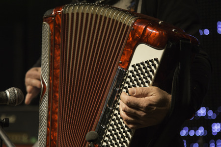 accordion: Accordion player Stock Photo