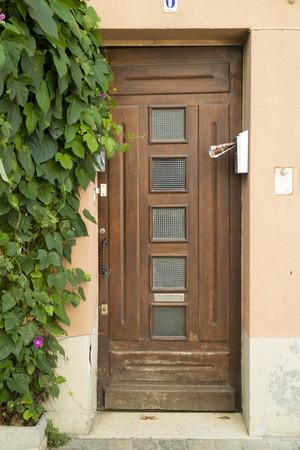 camargue: wood door in Camargue area