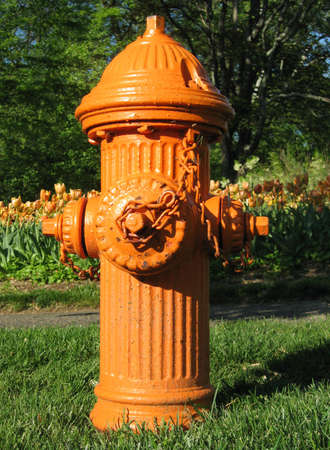 A bright orange fire hydrant stands in the grass in front of a backdrop of orange tulips.