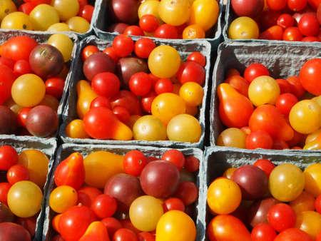 小さな、美しい家宝のトマト農家で日光の下の多くの品種 写真素材