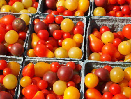 Many varieties of tiny, beautiful heirloom tomatoes in the sunlight at a farmer