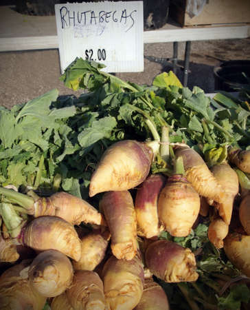 rutabaga: A table full of freshly picked rutabagas for sale at a local farmer Stock Photo