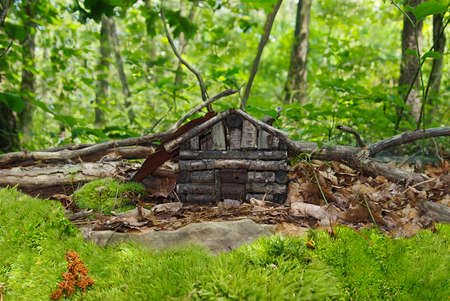 A tiny log cabin faerie dwelling sits hidden in the leaves and underbrush of a mossy forest