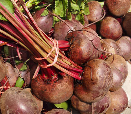 Piles of fresh red beets bunched together in rubber bands for sale at a local farmers market. Stock Photo