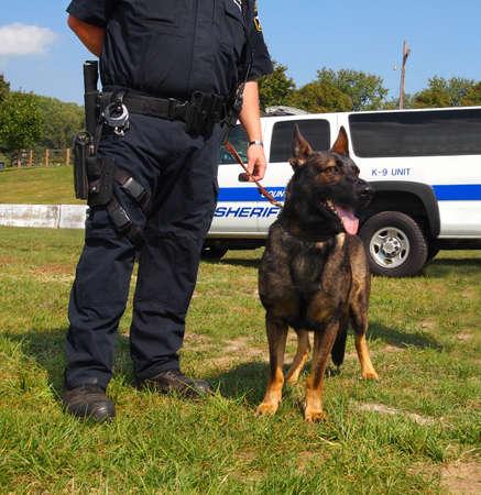perro policia: A K-9 de perro polic�a unidad est� tranquilamente junto al lado de un oficial de la armada.