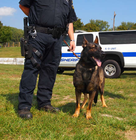 A K-9 unit police dog stands calmly next next to an armed law officer.