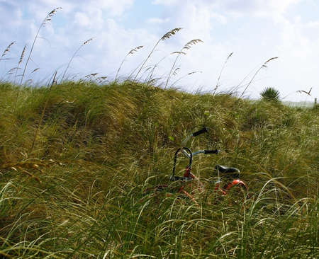 A red bicycle waits, hidden among the beach grasses near the shore, in front of a blue sky background. Stock Photo - 16565746