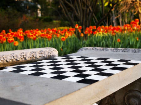 A Concrete Chess Table And Outdoor Seating Area Surrounded By A Blooming  Tulip Garden In The