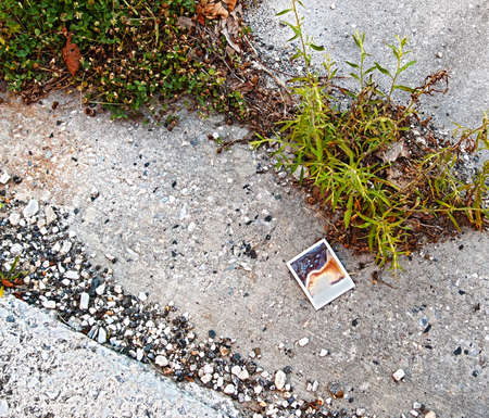An old, leaky polaroid photograph lies on the ground among some pebbles and weeds   Reklamní fotografie