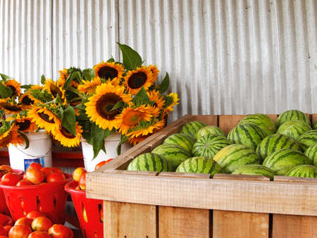 Watermelons, sunflowers, and tomatoes are merchandised for sale in various bins, buckets, and baskets at a rural farm market. photo