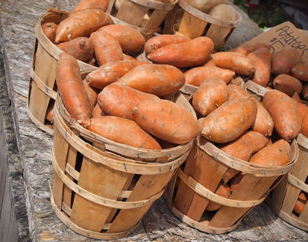 Bushels of vibrant orange colored sweet Potatoes for sale at a local farmers market.