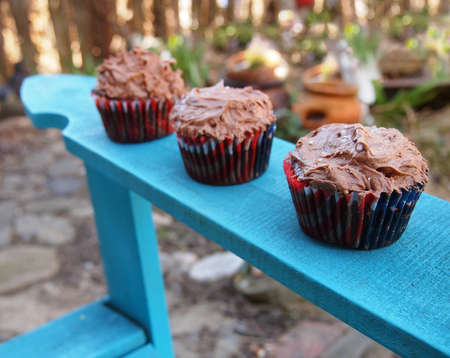 Three homemade chocolate cupcakes in 4th of July wrappers on the arm of an adirondack chair in the garden.