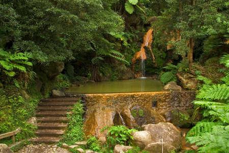 Caldeira Velha (Old Cauldron), a small dam and natural hot ferrous waterfall, San Miguel island, Azores, Portugal Stock Photo