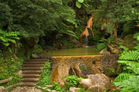ferrous: Caldeira Velha (Old Cauldron), a small dam and natural hot ferrous waterfall, San Miguel island, Azores, Portugal Stock Photo