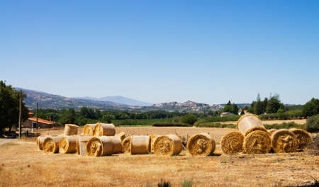 hayroll: Hayrolls laid on a field against Celorico da Beira town and its castle  Portugal