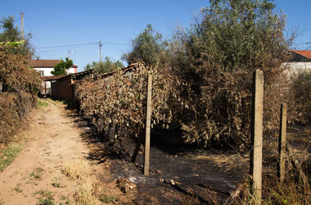 Burnt ground and crops next to a pathway and houses of the small village of Lameira Cimeira caused by a forest fire. Pedrogao Grande, Portugal. Stock Photo