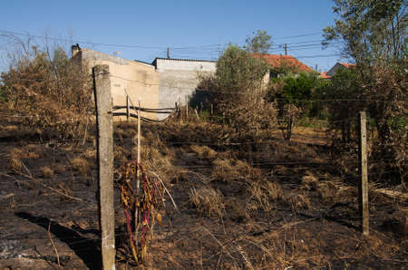 Burnt ground and crops right next to the homes of the small village of Lameira Cimeira caused by a massive forest fire. Pedrogao Grande, Portugal. Stock Photo
