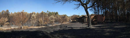 Panoramic view of burnt forest and shed at the small village of Lameira Cimeira caused by a massive forest fire. Burnt cork tree. Pedrogao Grande, Portugal. Stock Photo