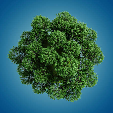 3d green planet full of trees, concept photo