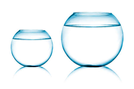 close up view of  two fish bowls on white background photo