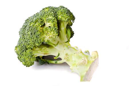 broccolli: fresh healthy broccolli on white background