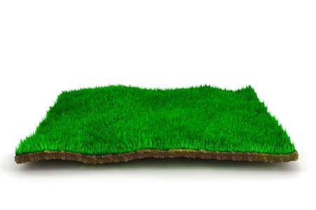 3d gras gazon, op een witte achtergrond